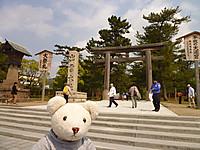 鳥取旅行2013(1)出雲大社