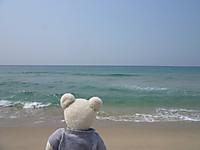 島根旅行2013(12)島根の海