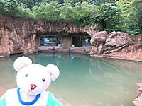 真夏の夜の動物園2014 ゾウの運動場