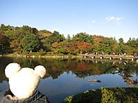 昭和記念公園2014年秋