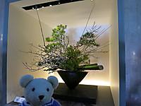 2015年お正月 東京国立博物館にお出かけ